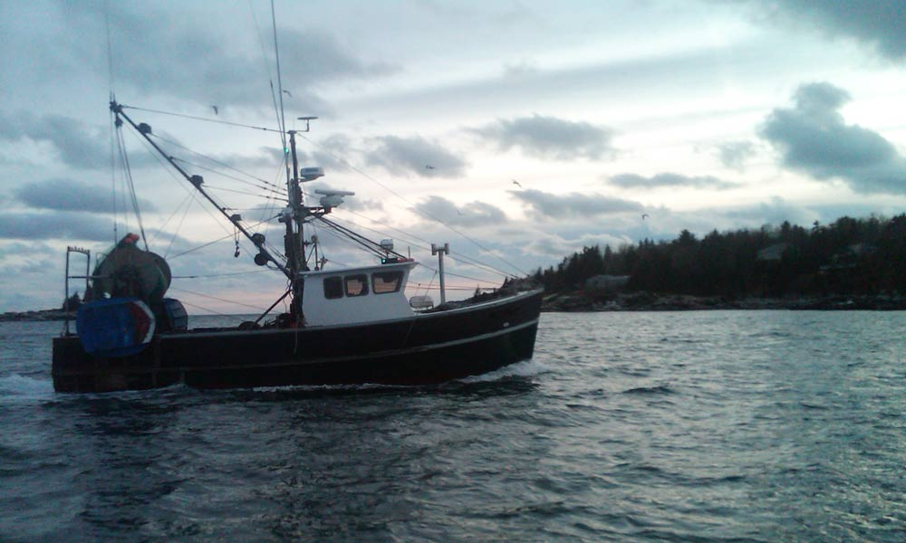 Fishing Vessel Retuirning